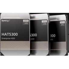Synology HAS5300-8T (8TB, SAS 12Gb/s, 256MiB)