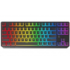 SPC Gear klávesnice GK630K Tournament Pudding / herní / mechanická / Kailh Red / RGB / US layout / USB / černá